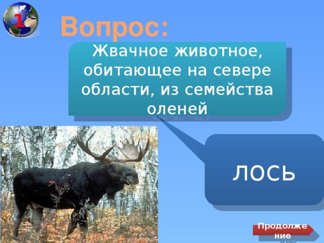 1 Вопрос: Жвачное животное, обитающее на севере области, из семейства оленей лось Продолжение