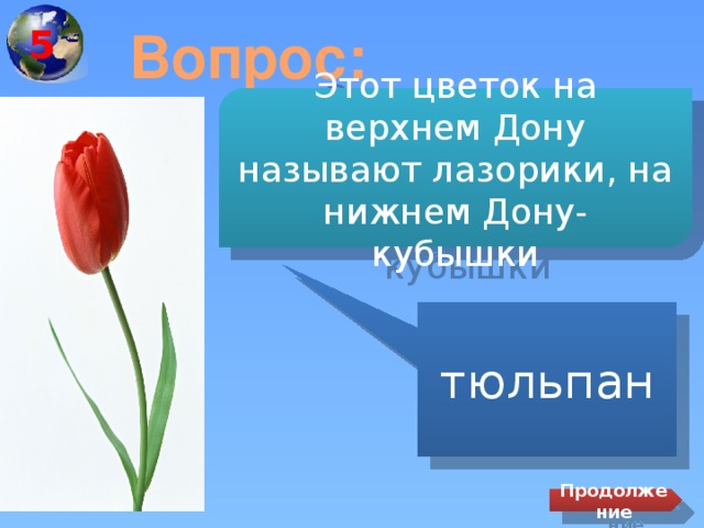 5 Вопрос: Этот цветок на верхнем Дону называют лазорики, на нижнем Дону- кубышки тюльпан Продолжение