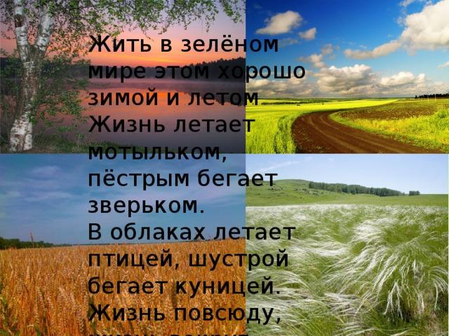 Жить в зелёном мире этом хорошо зимой и летом  Жизнь летает мотыльком, пёстрым бегает зверьком.  В облаках летает птицей, шустрой бегает куницей.  Жизнь повсюду, жизнь вокруг. Человек природе друг .