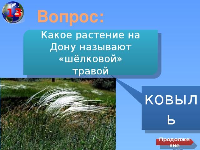13 Вопрос: Какое растение на Дону называют «шёлковой» травой ковыль Продолжение