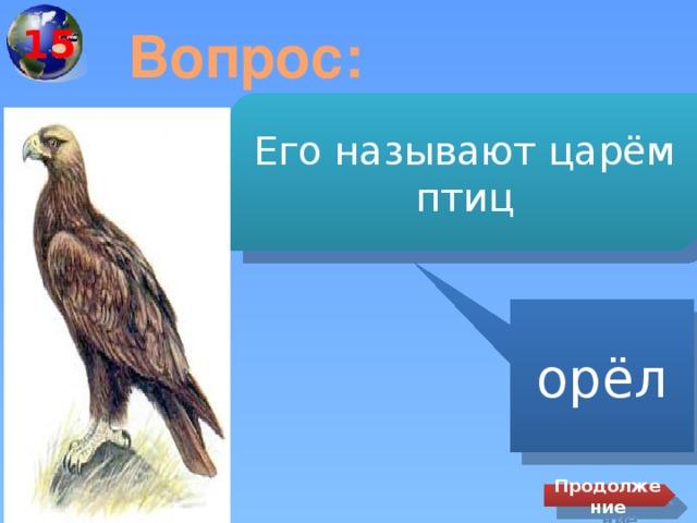 15 Вопрос: Его называют царём птиц орёл Продолжение