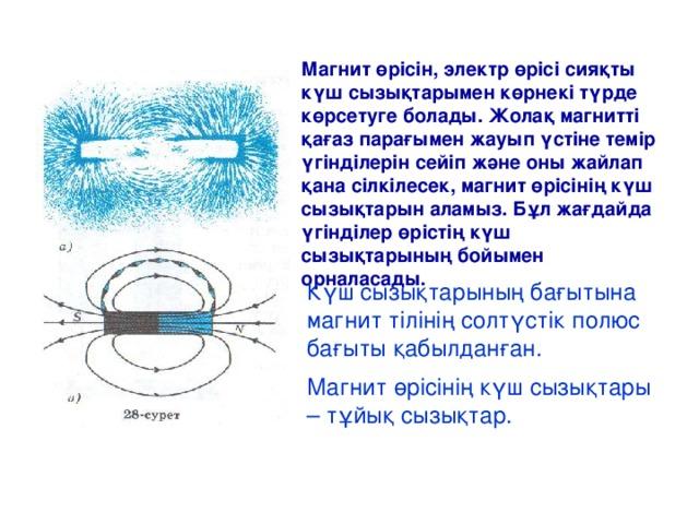 Магнит өрісін, электр өрісі сияқты күш сызықтарымен көрнекі түрде көрсетуге болады. Жолақ магнитті қағаз парағымен жауып үстіне темір үгінділерін сейіп және оны жайлап қана сілкілесек, магнит өрісінің күш сызықтарын аламыз. Бұл жағдайда үгінділер өрістің күш сызықтарының бойымен орналасады. Күш сызықтарының бағытына магнит тілінің солтүстік полюс бағыты қабылданған. Магнит өрісінің күш сызықтары – тұйық сызықтар.