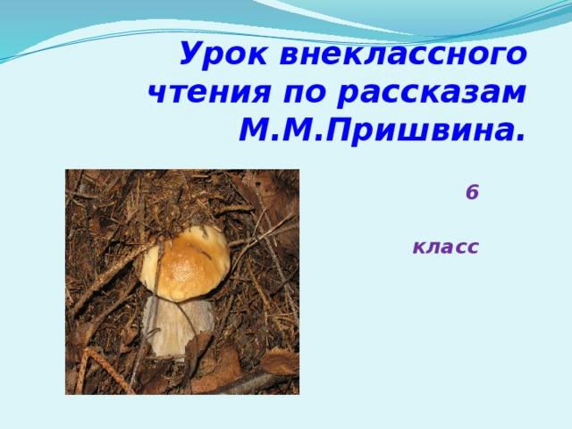 Урок внеклассного чтения по рассказам М.М.Пришвина.  6  класс