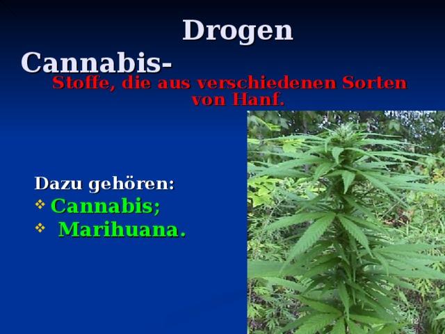 Drogen Cannabis -  Stoffe, die aus verschiedenen Sorten von Hanf .    Dazu gehören: Cannabis ;  Marihuana.