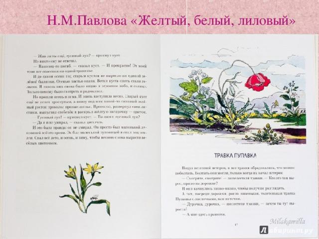 Н.М.Павлова «Желтый, белый, лиловый»