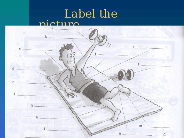 Label the picture