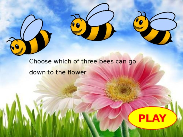 Choose which of three bees can go down to the flower. PLAY