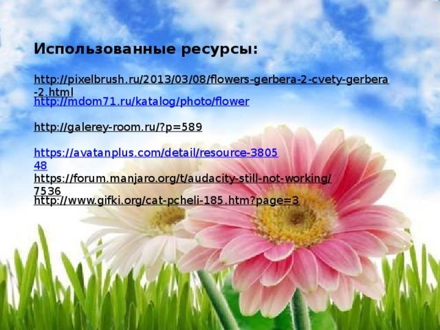 Использованные ресурсы: http://pixelbrush.ru/2013/03/08/flowers-gerbera-2-cvety-gerbera-2.html  http://mdom71.ru/katalog/photo/flower http://galerey-room.ru/?p=589  https://avatanplus.com/detail/resource-380548 https://forum.manjaro.org/t/audacity-still-not-working/7536  http://www.gifki.org/cat-pcheli-185.htm?page=3