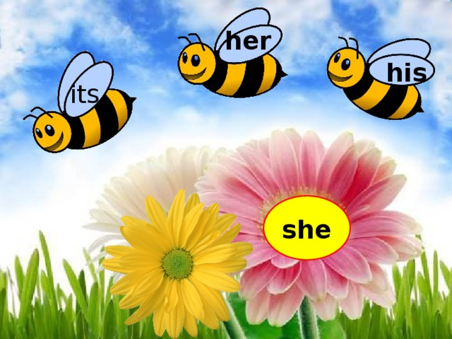 her his its she