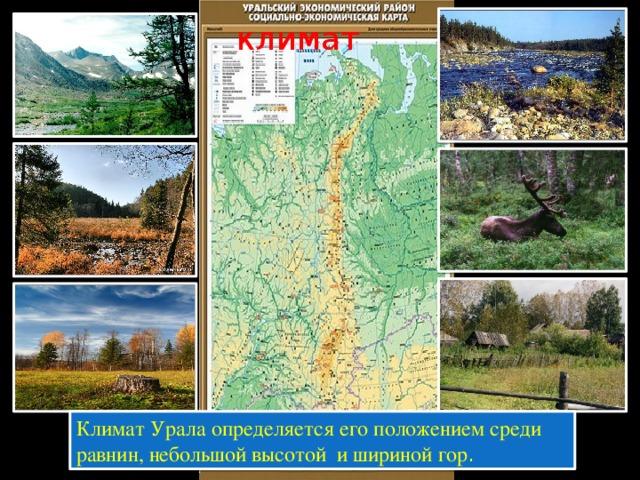 климат Климат Урала определяется его положением среди равнин, небольшой высотой и шириной гор .