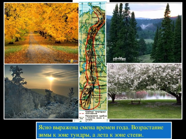 Ясно выражена смена времен года. Возрастание зимы к зоне тундры, а лета к зоне степи.