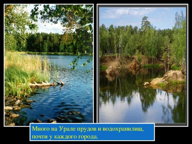 Много на Урале прудов и водохранилищ, почти у каждого города.