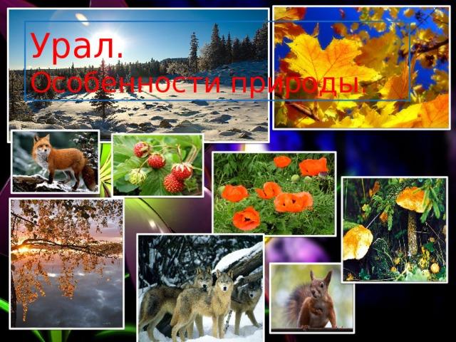 Урал. Особенности природы.