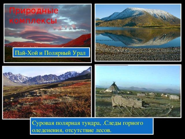 Пай-Хой и Полярный Урал Природные комплексы Суровая полярная тундра, .Следы горного оледенения, отсутствие лесов.
