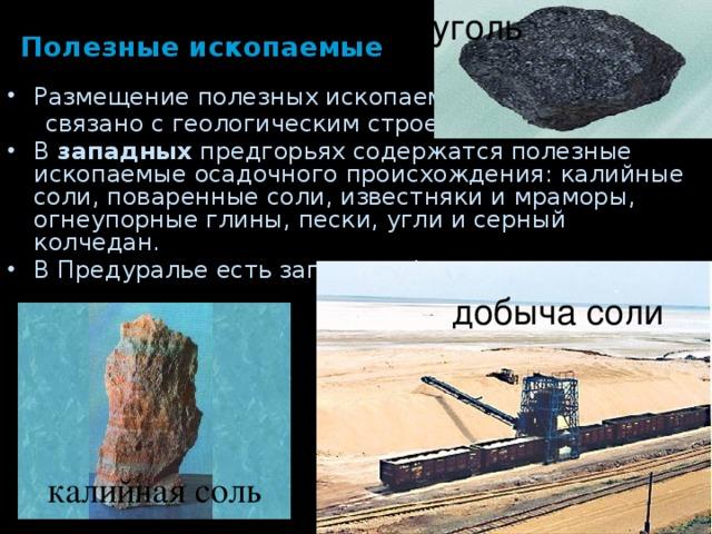 уголь Полезные ископаемые Размещение полезных ископаемых  связано с геологическим строением. В западных предгорьях содержатся полезные ископаемые осадочного происхождения: калийные соли, поваренные соли, известняки и мраморы, огнеупорные глины, пески, угли и серный колчедан. В Предуралье есть запасы нефти, газа. добыча соли калийная соль