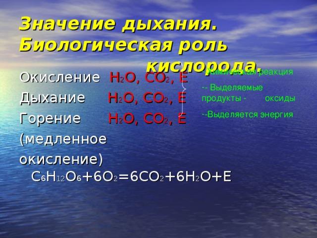 Значение дыхания. Биологическая роль       кислорода. - Химическая реакция - Выделяемые продукты -  оксиды -Выделяется энергия   Окисление H 2 О, СО 2 , E Дыхание H 2 О, СО 2 , E Горение H 2 О, СО 2 , E (медленное окисление) C 6 H 12 O 6 +6O 2 =6CO 2 +6H 2 O+E