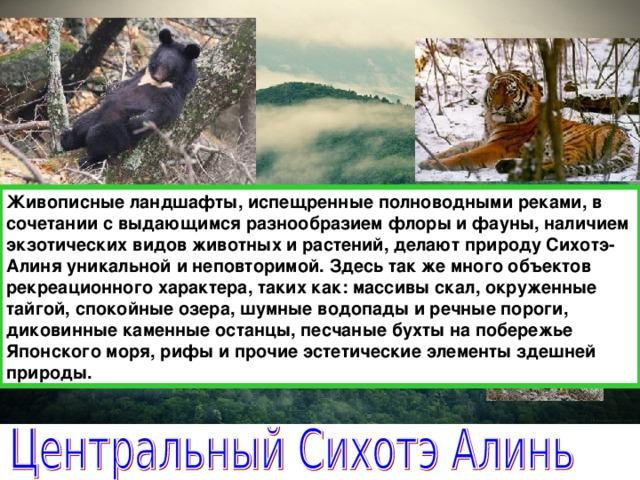 Живописные ландшафты, испещренные полноводными реками, в сочетании с выдающимся разнообразиемфлоры и фауны, наличием экзотических видов животных и растений, делают природу Сихотэ-Алиня уникальной и неповторимой. Здесь так же много объектов рекреационного характера, таких как: массивы скал, окруженные тайгой, спокойные озера, шумные водопады и речные пороги, диковинные каменные останцы, песчаные бухты на побережье Японского моря, рифы и прочие эстетические элементы здешней природы.