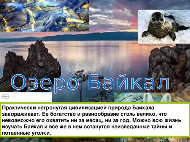 Практически нетронутая цивилизацией природа Байкала завораживает. Ее богатство и разнообразие столь велико, что невозможно его охватить ни за месяц, ни за год. Можно всю жизнь изучать Байкал и все же в нем останутся неизведанные тайны и потаенные уголки.