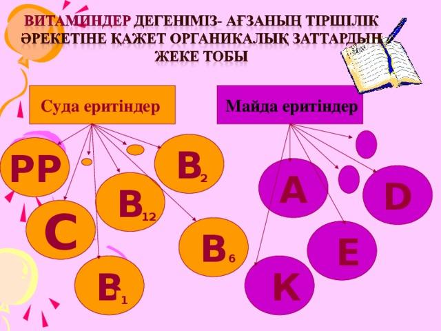 Суда еритіндер  Майда еритіндер В РР А D 2 В С 12 В  Е 6  К В 1