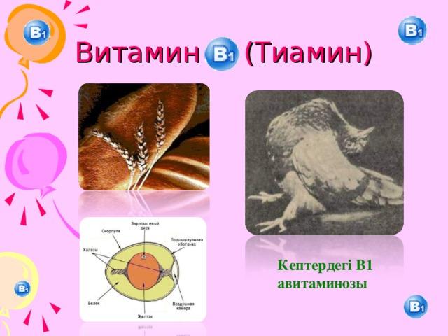 Витамин (Тиамин) Кептердегі В1 авитаминозы