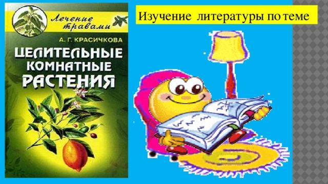 И зучение  литературы  по  теме