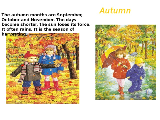 Autumn The autumn months are September, October and November. The days become shorter, the sun loses its force. It often rains. It is the season of harvesting .