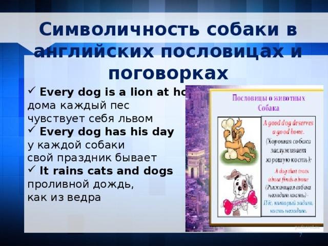 Символичность собаки в английских пословицах и поговорках Every dog is a lion at home дома  каждый пес чувствует себя львом Every dog has his day у каждой собаки свой праздник бывает It rains cats and dogs проливной дождь, как из ведра