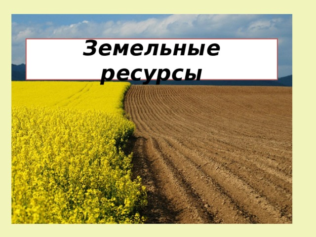 Земельные ресурсы