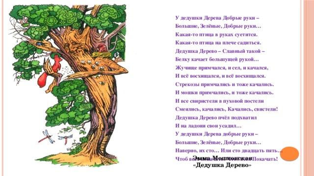 У дедушки Дерева Добрые руки – Большие, Зелёные, Добрые руки… Какая-то птица в руках суетится. Какая-то птица на плече садиться. Дедушка Дерево – Славный такой – Белку качает большущей рукой… Жучище примчался, и сел, и качался, И всё восхищался, и всё восхищался. Стрекозы примчались и тоже качались. И мошки примчались, и тоже качались. И все свиристели в пуховой постели Смеялись, качались, Качались, свистели! Дедушка Дерево пчёл подхватил И на ладони свои усадил… У дедушки Дерева добрые руки – Большие, Зелёные, Добрые руки… Наверно, их сто… Или сто двадцать пять… Чтоб всех покачать! Чтоб всех Покачать! Эмма Мошковская «Дедушка Дерево»