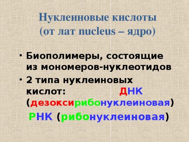 Нуклеиновые кислоты  (от лат nucleus – ядро) Биополимеры, состоящие из мономеров-нуклеотидов 2 типа нуклеиновых кислот:  Д НК ( дезокси рибо нуклеиновая )  Р НК ( рибо нуклеиновая )