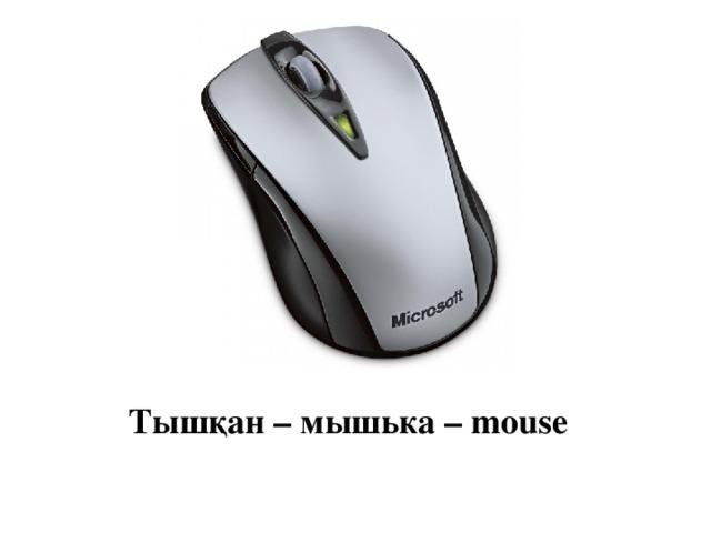 Тышқан – мышька – mouse