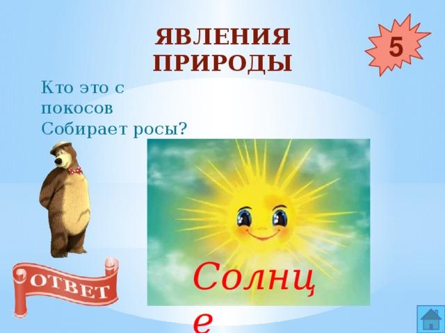 Явления природы 5 Кто это с покосов  Собирает росы? Солнце