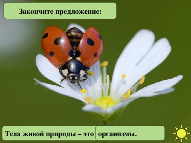 Закончите предложение: Закончите предложение. Тела живой природы – это … Тела живой природы – это ... организмы.