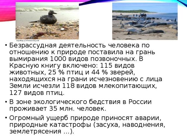 Безрассудная деятельность человека по отношению к природе поставила на грань вымирания 1000 видов позвоночных. В Красную книгу включено: 115 видов животных, 25 % птиц и 44 % зверей, находящихся на грани исчезновению с лица Земли исчезли 118 видов млекопитающих, 127 видов птиц. В зоне экологического бедствия в России проживает 35 млн. человек. Огромный ущерб природе приносят аварии, природные катастрофы (засуха, наводнения, землетрясения …).