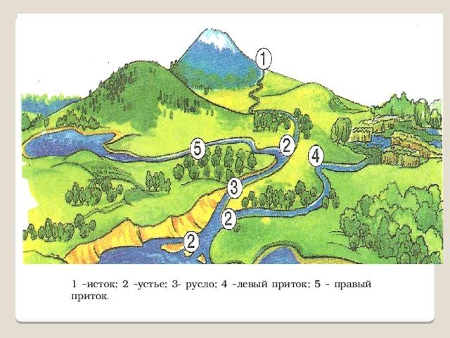 1 – исток; 2 – устье; 3- русло; 4 – левый приток; 5 – правый приток .