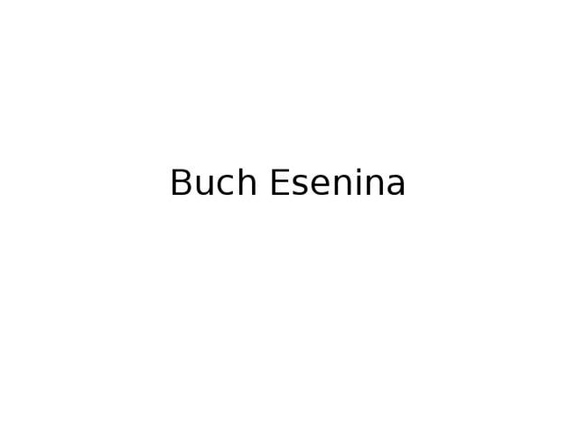 Buch Esenina