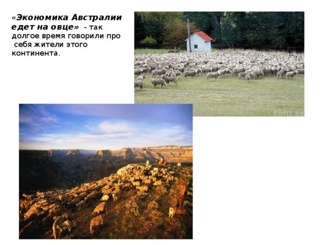 « Экономика Австралии едет на овце» - так долгое время говорили про себя жители этого континента.