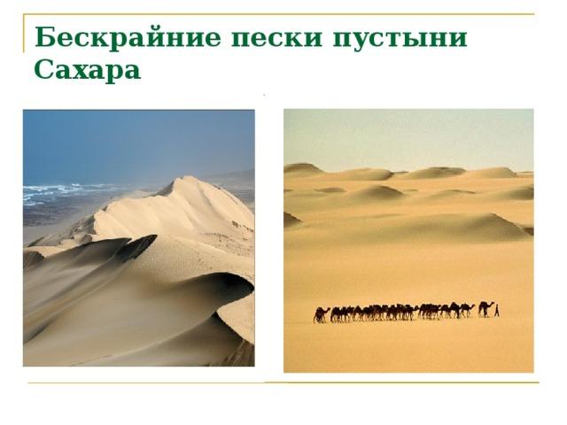 Бескрайние пески пустыни Сахара   29