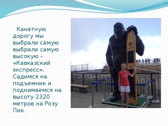 Канатную дорогу мы выбрали самую выбрали самую высокую – «Кавказский экспресс». Садимся на подъемник и поднимаемся на высоту 2320 метров на Розу Пик .