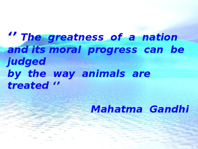 '' The greatness of a nation and its moral progress can be judged by the way animals are treated ''  Mahatma Gandhi