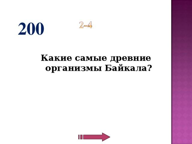 200  Какие самые древние организмы Байкала?