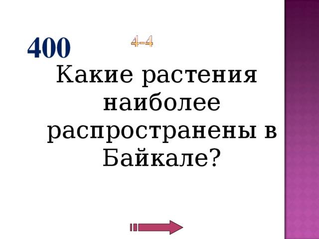 400 Какие растения наиболее распространены в Байкале?