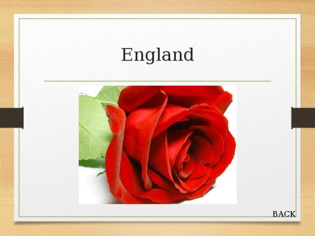 England BACK