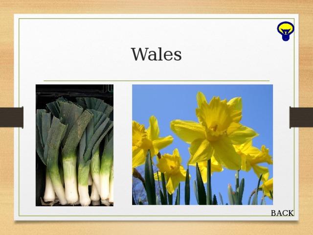 Wales BACK