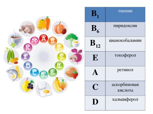 В 1 тиамин В 6 пиридоксин В 12 цианокобаламин E токоферол A ретинол C аскорбиновая кислота D кальциферол
