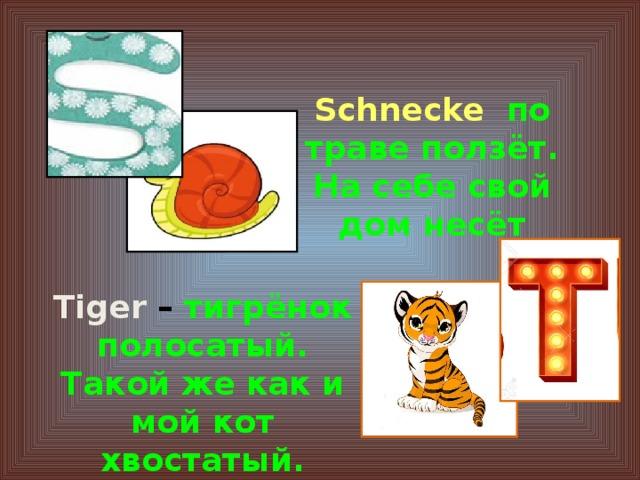 Schnecke  по траве ползёт. На себе свой дом несёт Tiger – тигрёнок полосатый. Такой же как и мой кот хвостатый.