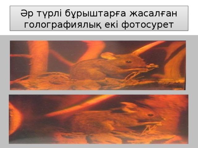 Әр түрлі бұрыштарға жасалған голографиялық екі фотосурет
