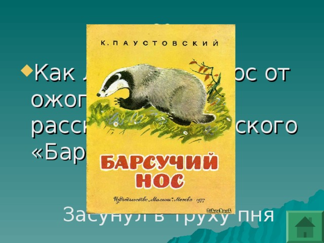 Как лечил свой нос от ожога барсук в рассказе Паустовского «Барсучий нос»?