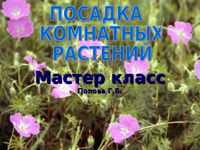 Мастер класс  Попова Г.Б.