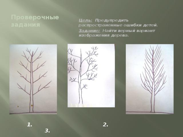 Проверочные задания Цель: Предупредить распространенные ошибки детей. Задание: Найти верный вариант изображения дерева. 1. 2. 3.